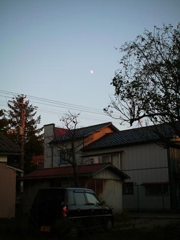 20101019_p1450239