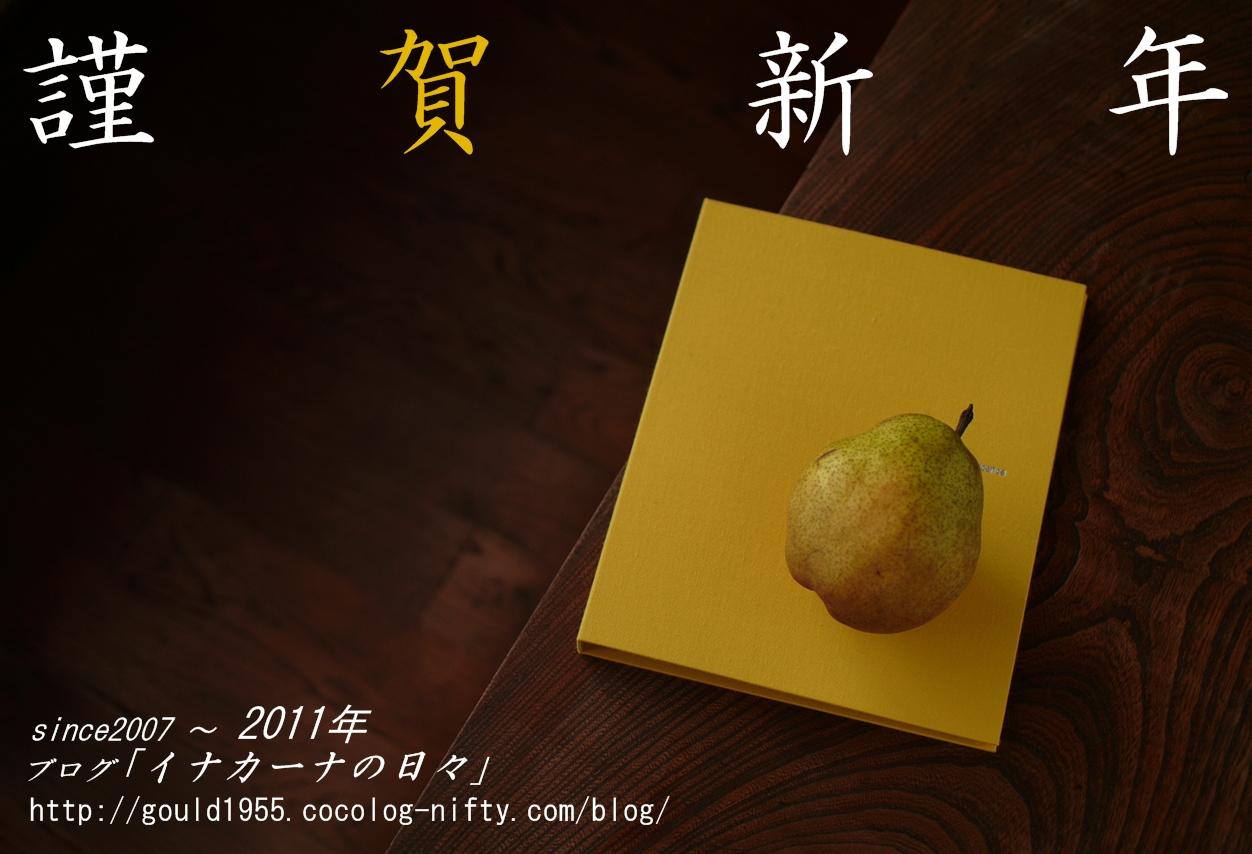 20110101_dp1490061_3